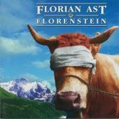 Florenstein by Florian Ast
