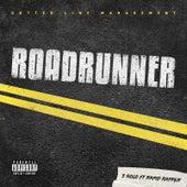Roadrunner (feat. Rapid Rapper) by 3 Solo