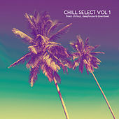 Chill Select, Vol. 1 by Various Artists