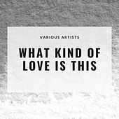 What Kind of Love Is This by Various Artists