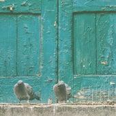 Pigeon Stools von Flightless Birds