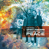 PEACE by Spirit Fingers