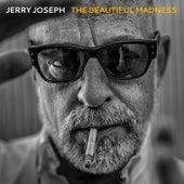 The Beautiful Madness by Jerry Joseph