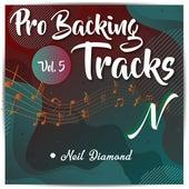 Pro Backing Tracks N, Vol.5 by Pop Music Workshop