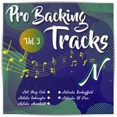Pro Backing Tracks N, Vol.3 by Pop Music Workshop