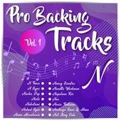 Pro Backing Tracks N, Vol.1 by Pop Music Workshop