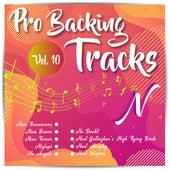 Pro Backing Tracks N, Vol.10 by Pop Music Workshop
