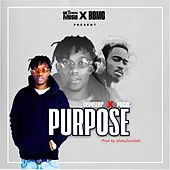 Purpose by Leveller