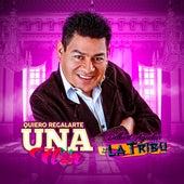 Quiero Regalarte una Flor von Dilbert Aguilar y su Orquesta La Tribu