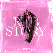 RnB Story by Various Artists
