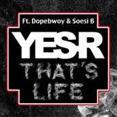 That's life de Yes-R