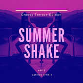 Summer Shake (Groovy Terrace Edition), Vol. 1 by Various Artists