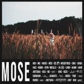 NOI di Mose