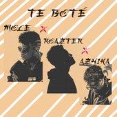 Te Boté von Roazter Mole