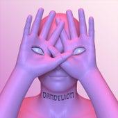 Dandelion by Madanii