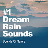#1 Dream Rain Sounds by Sounds Of Nature
