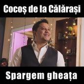 Spargem Gheata de Cocos de la Calarasi