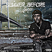 Summer Before Winter by Various Artists