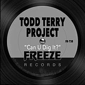 Can U Dig It? by Todd Terry