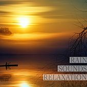 Stress Sounds Relaxation van Rain Sounds (2)