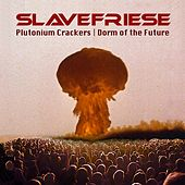 Plutonium Crackers / Dorm of the Future de Slavefriese