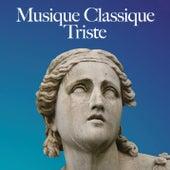 Musique classique triste by Various Artists