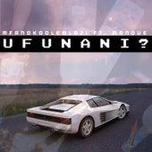 Ufunani? by Mfanokoolemlazi