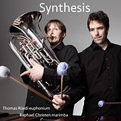 Synthesis (Euphonium & Marimba) by Duo Synthesis