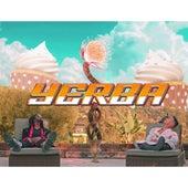 Yerba by Alek Sandar
