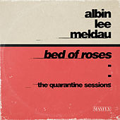 Bed of Roses (The Quarantine Sessions) by Albin Lee Meldau