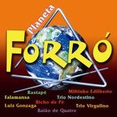 Planeta Forró by Vários Artistas