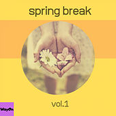 Spring Break, Vol. 1 de Various Artists