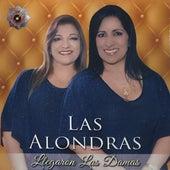 Llegaron las Damas de Las Alondras