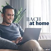 Bach at Home de Various Artists