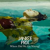 Where Did We Go Wrong? by Janice Prix