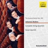 The Auryn Series, Vol. 16 von Auryn-Quartet