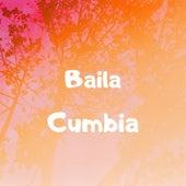 Baila Cumbia de Grupo Sombras, Grupo Trinidad, La Barra, Los Charros