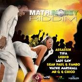 MatriMoney Riddim by Various Artists