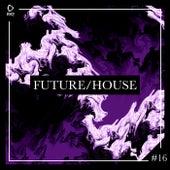 Future/House #16 von Various Artists