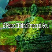 73 Peace of Mind Tranquil Soul by Yoga Workout Music (1)