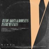 V  Instrumentales de Rxnde Akozta