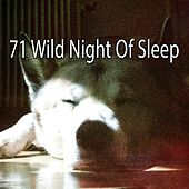 71 Wild Night of Sle - EP de Relajacion Del Mar