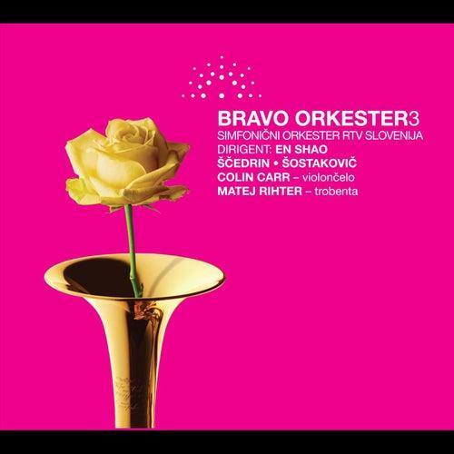 Bravo orkester vol. 3 by Various Artists