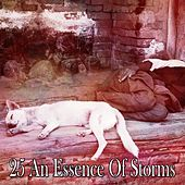25 An Essence of Storms by Rain Sounds and White Noise