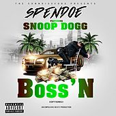 Boss'n (Options) de Spendoe