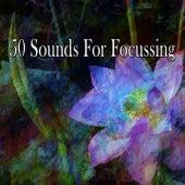 50 Sounds for Focussing de Meditación Música Ambiente