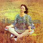 78 Tracks to Feel Peaceful von Music For Meditation