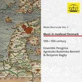 Mare Balticum, Vol. 1: Music in Medieval Denmark (13th - 15th Century) de Ensemble Peregrina