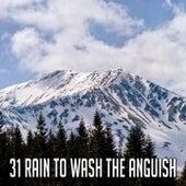 31 Rain to Wash the Anguish de Thunderstorm Sleep