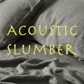 Acoustic Slumber von Various Artists